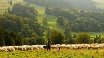 Make the Most out of your Rural Enterprise